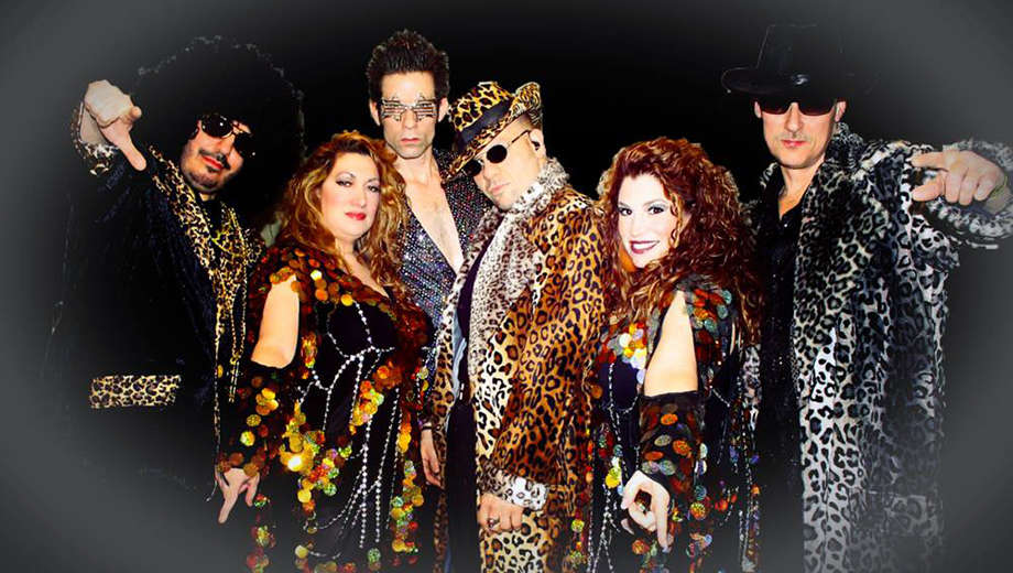 Music Artists - Disco Unlimited - Disco Freestyle Platinum Series